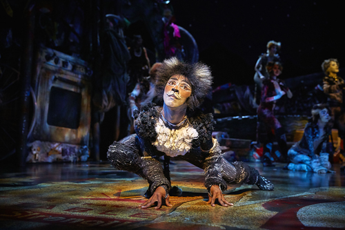cats musical 18